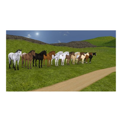 Videogioco Koch Media - Horse life 4