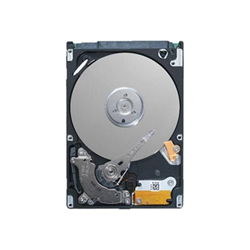 Disque dur interne Dell - Disque dur - 320 Go - interne - 2.5
