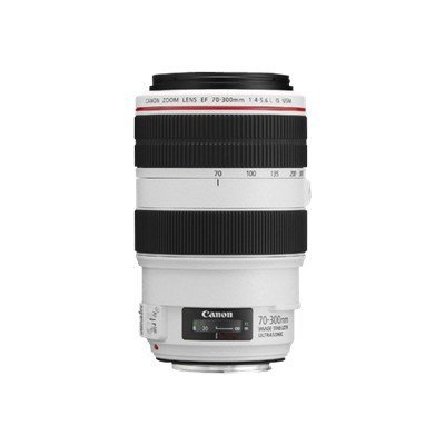 Canon - EF 70-300MM F4-5.6L IS USM