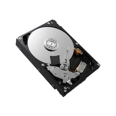 Hard disk interno Toshiba - HDD 3 5P 1000GB 64MB 7200RPM