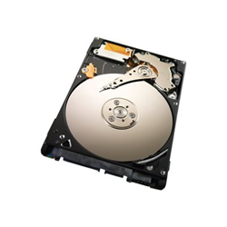 Hard disk interno Seagate - Seagate momentus thin st250lt012 -