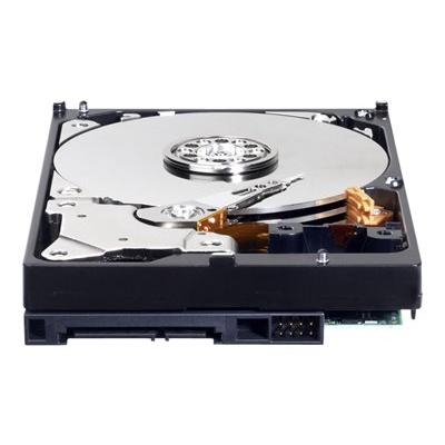 WESTERN DIGITAL - HDD 3.5P 250GB 7200 16MB SATA3 (DK)
