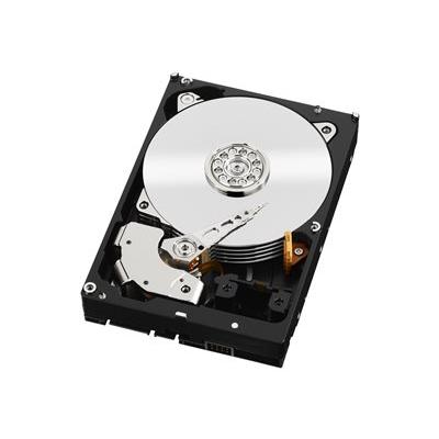WESTERN DIGITAL - WD RE 3.5P 500GB 7200 64MB S3 (EP)-