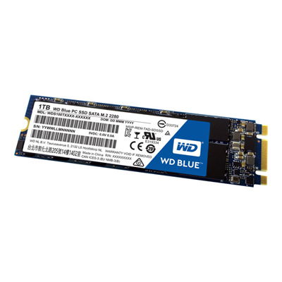 WESTERN DIGITAL - SSD WD BLUE 1000 GB M.2