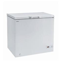 Congelatore Ichp 200