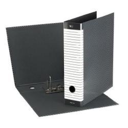 Boîte à archive Esselte Delso Line - Classeur à levier - 50 mm - 230 x 300 mm