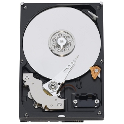 Hard disk interno Lenovo - Nas drive 1tb for ix2 2-bay/ix4-300