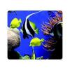 Tapis de souris Fellowes - Fellowes Recycled Mouse Pad...
