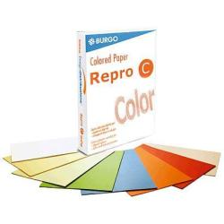 Papier REPRO C A4 80GR COULEURS ASSORTIES