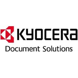 Kyocera - DDR - 128 Mo - DIMM 100 broches - 333 MHz / PC2700 - 2.5 V - mémoire sans tampon - non ECC - pour FS-1100, 1300, 2000, 9130, 9530, C5015, C5025, C8100; KM 25XX, 30XX, C2525, C3232, C4035