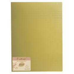 Boîte à archive Exacompta Forever - Porte vues - 40 pochettes - A4 - citron vert