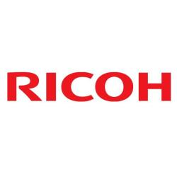 Ricoh Type B - SDRAM - 32 Mo - SO DIMM 144 broches - 100 MHz / PC100 - mémoire sans tampon - non ECC - pour Ricoh Aficio 30XX, Aficio 32XX, MP 3353, MP C2003, MP C2503, MP C401; FAX 3310, 44XX