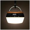 Torcia elettrica Bushnell - R200l