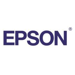 Papier Epson Traditional Photo Paper - Rouleau (61 cm x 15 m) - 300 g/m² - papier photo - pour SureColor SC-P10000, P20000, P6000, P7000, P8000, P9000, T3000, T3200, T5200, T7000, T7200