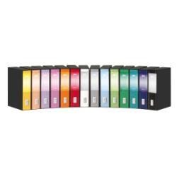 Boîte à archive Rexel Dox Box 2 - Classeur à levier - 80 mm - A4, A4 Plus - rose