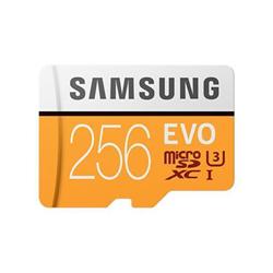 Scheda di memoria Samsung - Mb-mp256ga/eu