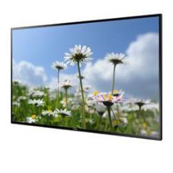 """Écran LFD Samsung ED75D - 75"""" Classe - ED-D Series écran DEL - signalisation numérique - 1080p (Full HD) - noir"""
