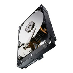 Hard disk interno Seagate - Hdd seag constellation es.3 1tbsata