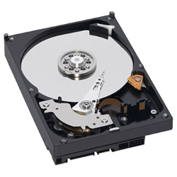 Hard disk interno Dell - Hard drive   50