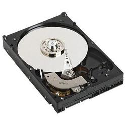 Disque dur interne Fujitsu enterprise - Disque dur - 300 Go - échangeable à chaud - 3.5