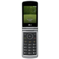 "Téléphone portable LG G351 - Téléphone mobile - microSDHC slot - GSM - 3"" - 240 x 320 pixels - TFT - 1,3 MP - titane"