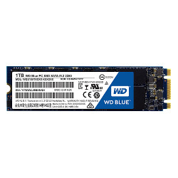 Disque dur interne WESTERN DIGITAL - WD Blue PC SSD WDS100T1B0B -...