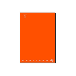 Pigna - CF10QUADERNI MONOCROMO QI 100G QI