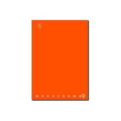 Pigna - CF10QUADERNI MONOCROMO QI 100G RI