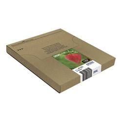 Cartuccia Epson - Multipack 29xl easymail - confezione da 4 - xl c13t29964511
