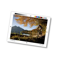 Carta Mondi - Color copy - carta - seta opaca - 250 fogli - a3 - 135 g/m² ef46