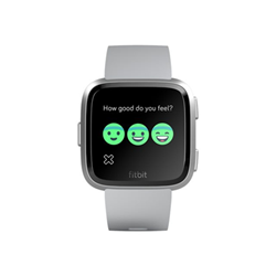 Smartwatch Fitbit - Versa - alluminio argento - smartwatch con cinturino - grigio fb505srgy-eu