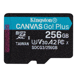 Micro SD Kingston - Canvas go! plus - scheda di memoria flash - 256 gb sdcg3/256gbsp