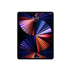 "Tablet Apple - 12.9-inch ipad pro wi-fi - 5^ generazione - tablet - 256 gb - 12.9"" mhnh3ty/a"