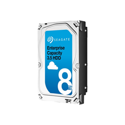 Hard disk interno Seagate - Seagate enterprise capacity 3.5 hdd