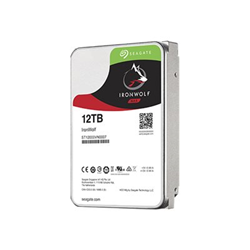 Hard disk interno Seagate - Ironwolf 12tb nas