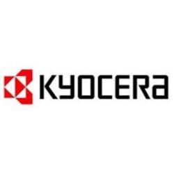 Toner KYOCERA - Tk810c