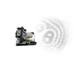 Lampada BenQ - Lampada proiettore 5j.y1c05.001