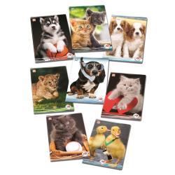 Blasetti - I cucciolosi