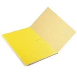Quaderno Fabriano - Ecoqua P.Met. Limone ff Banana Cf5p