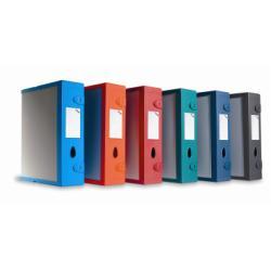 Raccoglitore Fellowes - SCATOLA ARCHIVIO COMBI-BOX