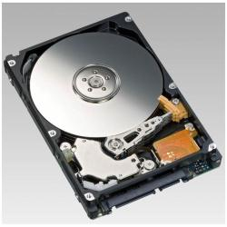 Hard disk interno Fujitsu - Business critical - hdd - 1 tb - sata 3gb/s s26361-f3601-l100