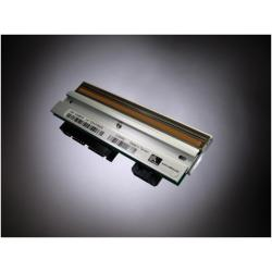 Testina di stampa Zebra - G105910-053