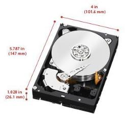 Hard disk interno WESTERN DIGITAL - Wd gold