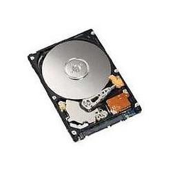 """Disque dur interne Fujitsu - Disque dur - 500 Go - 2.5"""" - SATA 3Gb/s - 5400 tours/min - pour CELSIUS Mobile H730"""