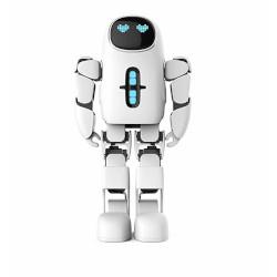 Robot Robot Umanoide PANDO