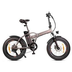 Bicicletta Monster Bike Pieghevole M1PLUS Argento