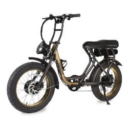 Bicicletta Argento Bike - MadMax Ruote 20'' Velocità max 25 km/h - Autonomia 70km - Oro-Alluminio